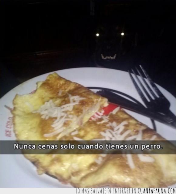 brillo,cena,comida,cubiertos,huevo,miedo,mirada,monstruo,ojos,perro,silueta,tortilla