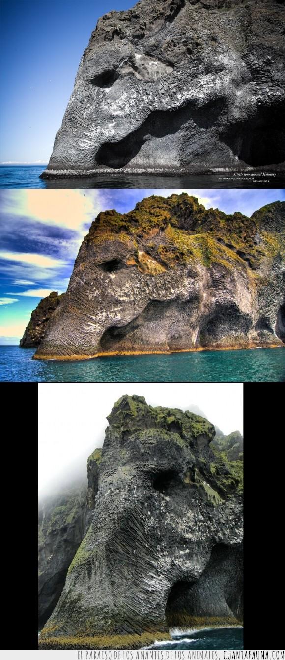 elefante,ilusión óptica,islandia,la naturaleza no deja de sorprendernos,roca