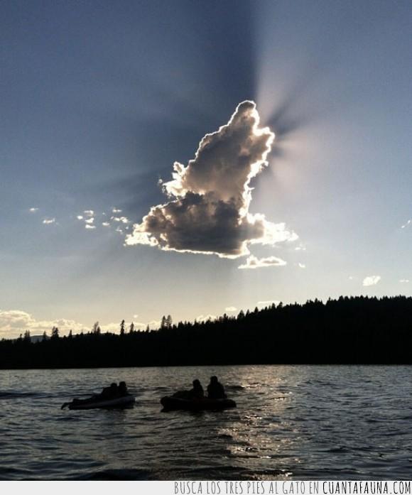 atardecer,bosque,cielo,lanchas,lobo,nube,ocaso,río