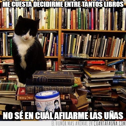 afilar,biblioteca,libreria,libros,uñas