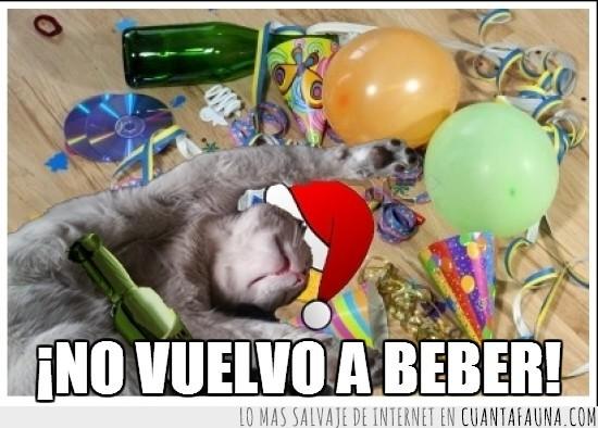 beber,botellas,fiesta,globos,gorro