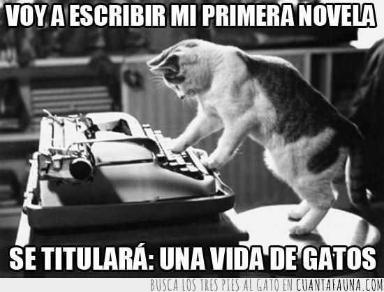 gato,maquina de escribir,novela,novelista,primera,una vida de gatos