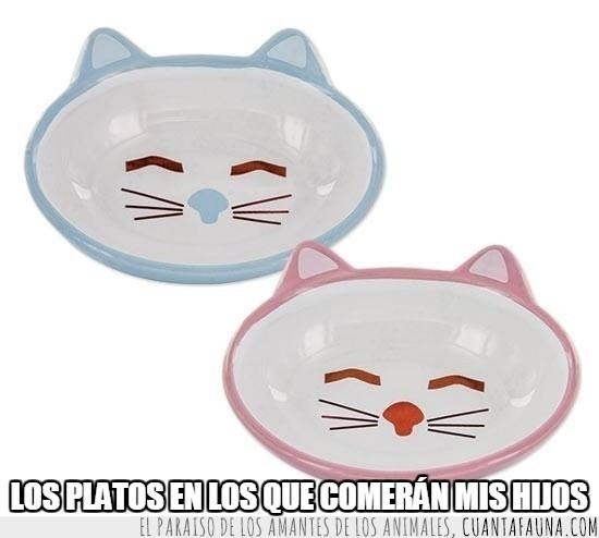bigotes,comer,gatito,hijos,niños,platos