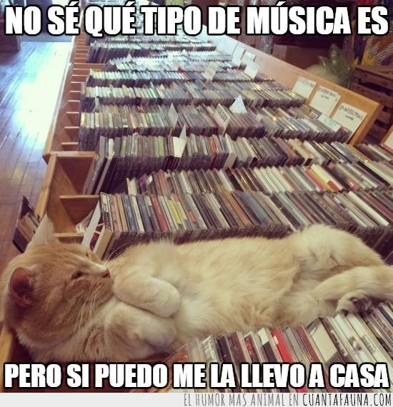 discos,hueco,musica,tienda