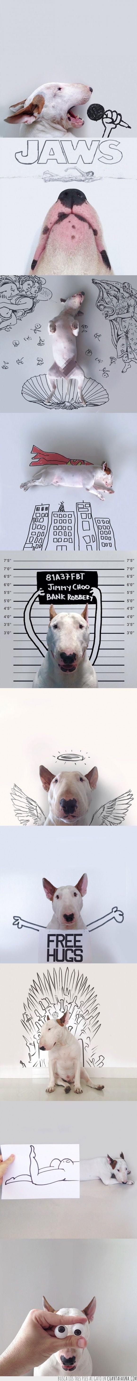 arte,bull terrier,bullterrier,ilustraciones,mix,perro