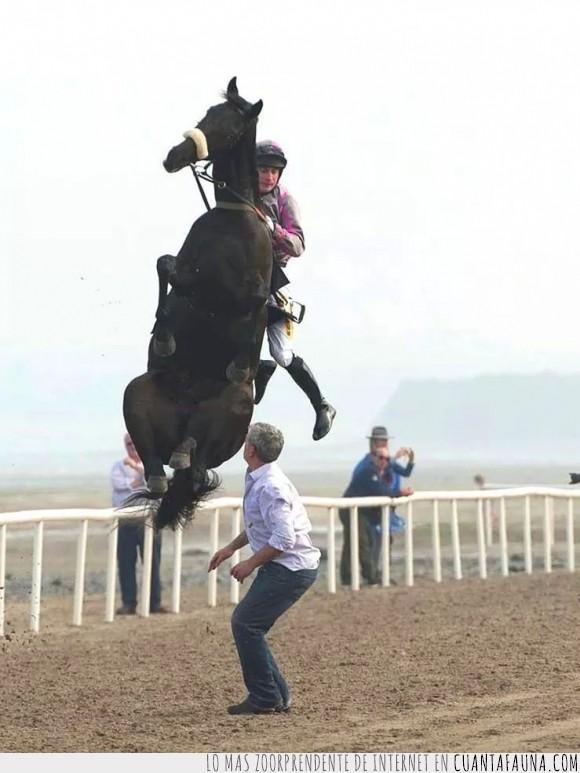 caballo,carrera,necesita,planeta,saltar,salto,vamonos,volar
