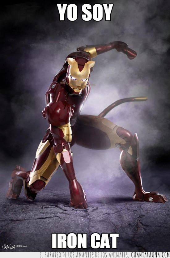 iron cat,iron man,ironcat,ironman,superheroe