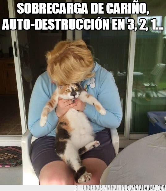 abrazar,alejate,auto-destrucción,gato,humano,indeseable,sobrecarda