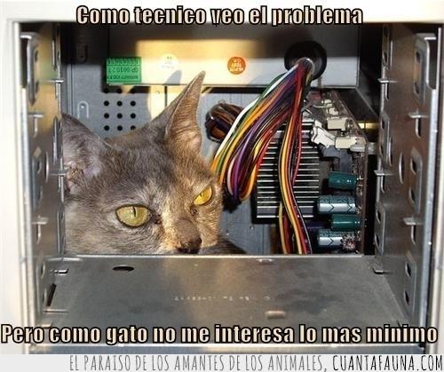 no me interesa,ordenador,problema,servicio gatécnico