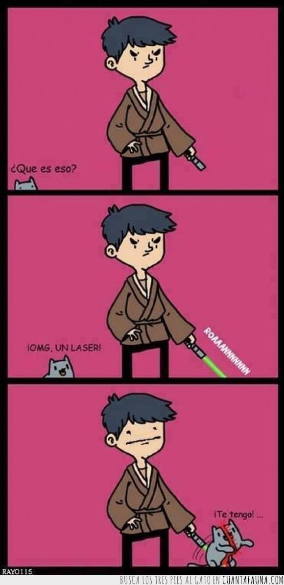 cortar,espada,gato,jedi,jugar,sable laser,star wars