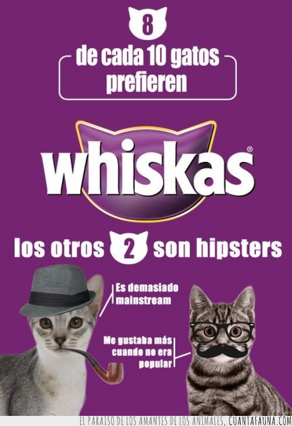alimento,apple,diez,gato,hipster,ocho,whiskas