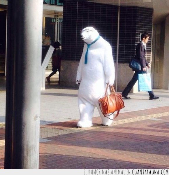 anuncio,blanco,coca cola,cosplay,dicembre,disfraz,epoca,navidad,oso,oso polar