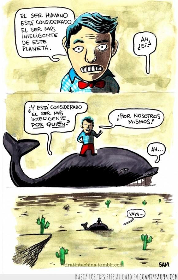 agua,ballena,cambio climático,desierto,humanos,inteligente,nos estamos cargando el planeta