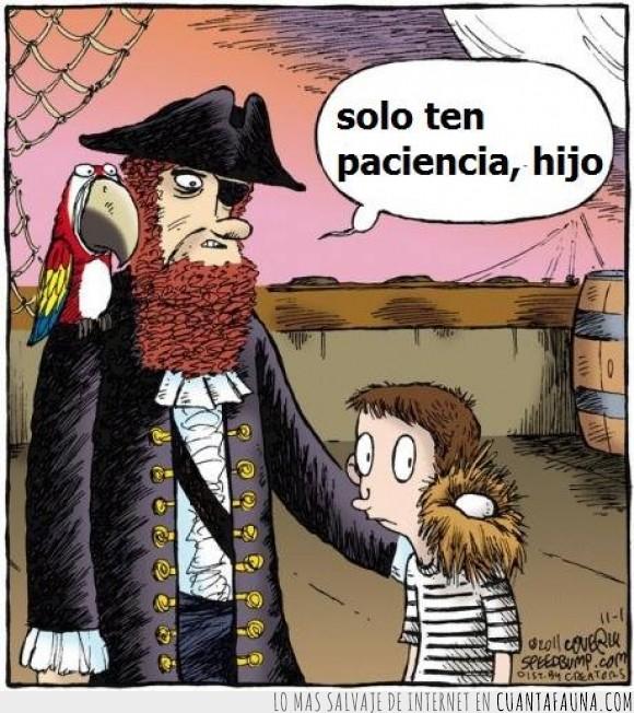 barco,crecer,ejemplo,huevo,loro,nacer,nido,niño,paciencia,pirata
