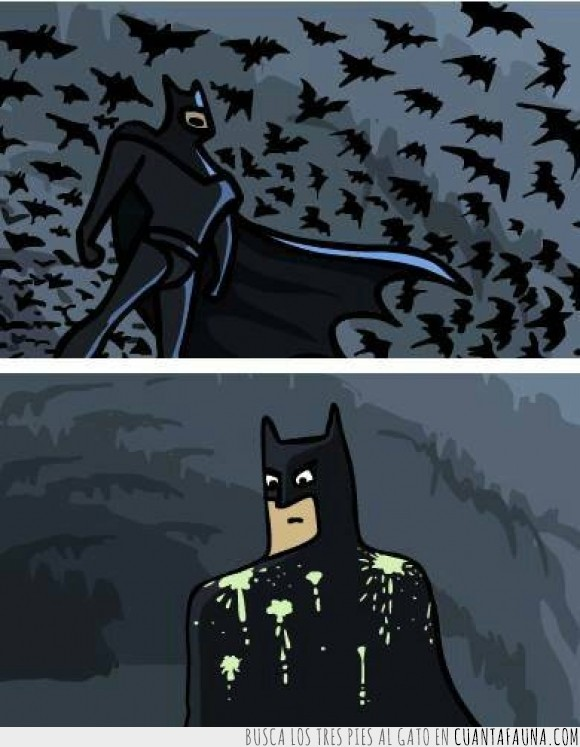 batman,caca,guano,impresionar,murciélago