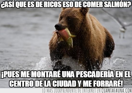 morir,nacer,no sé si entraría en una tienda regentada por un oso pardo,oso,pescado,remontar,salmon