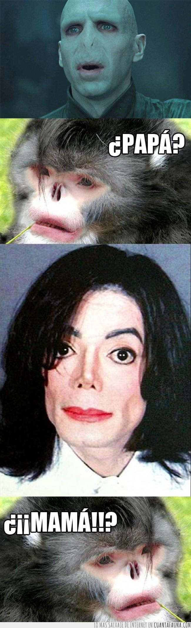 mama,michael jackson,mono,papa,primate,simio,sin nariz,voldemort
