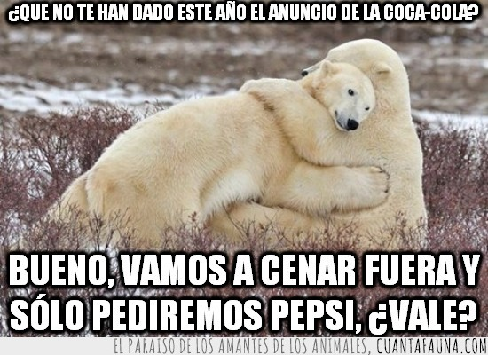 anuncio,cenar fuera,coca-cola,consolar,no dar,oso polar,osos polares,pepsi,rechazado
