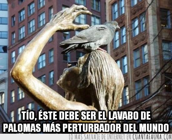 amenazante,estatua,las estatuas son lavabos de palomas,mano,paloma