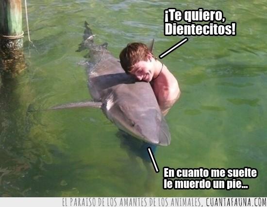 abrazar,abrazo,humano,morder,se hace el duro pero le gusta,tiburon,un pie