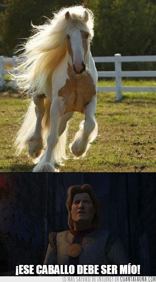 caballo,crin,encantador,pelazo,principe,shrek