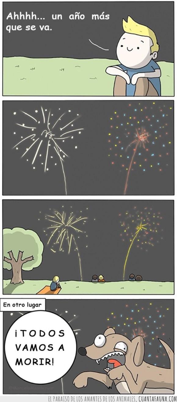año nuevo,asustar,miedo,perro,petardo,pirotecnia,ruido,susto