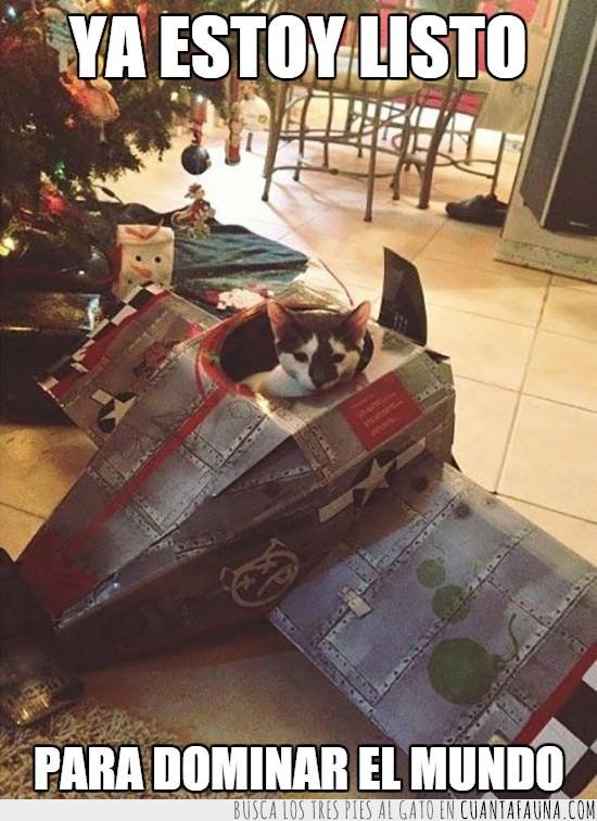 avion de combate,cartón,dominar,gatito,gato,guerra,mundo,nave,tierno
