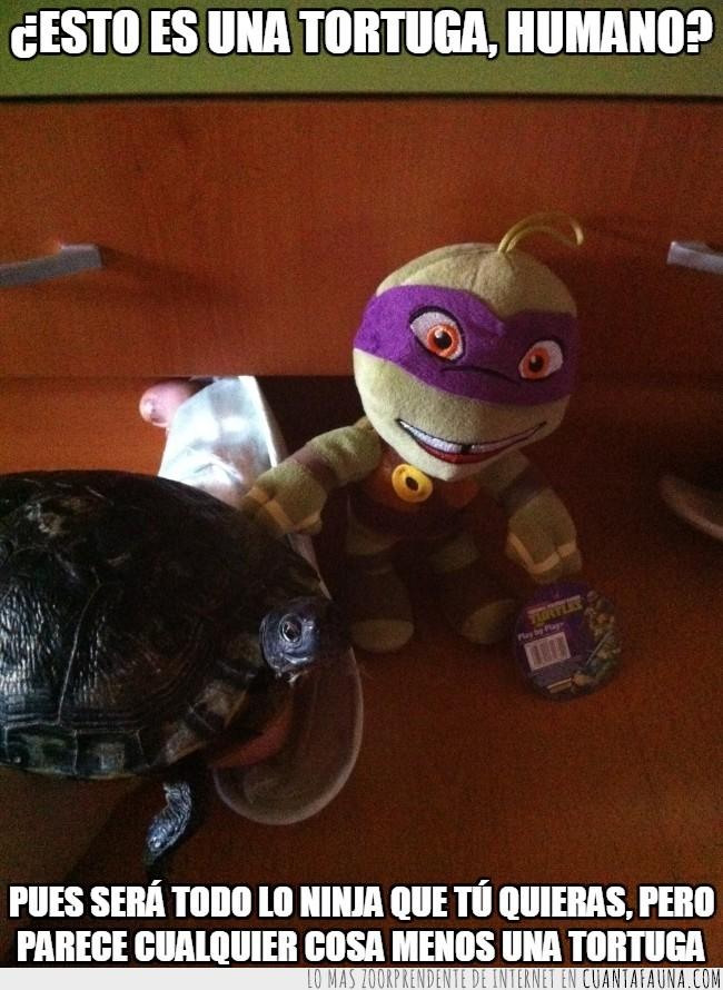 diferencias,Donatello,tortuga,tortuga ninja