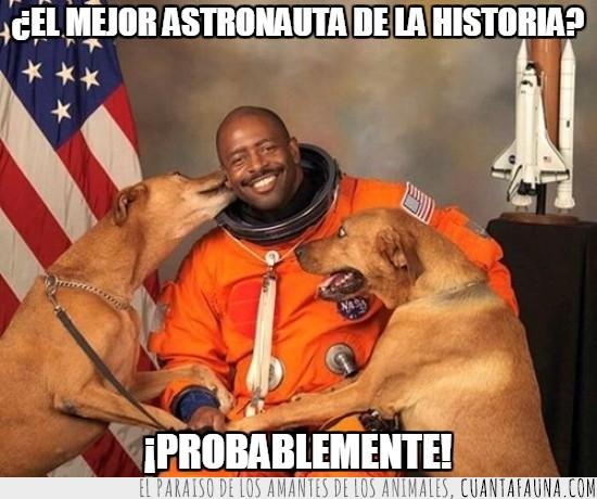 astronauta,bandera,foto,perros,traje espacial