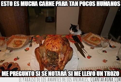 accion de gracias o navidad,cara de loco,humanos,mucha carne,pavo