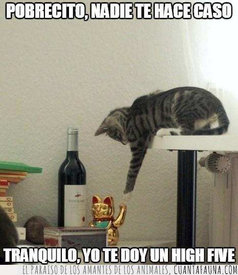 chino,chocar,chocar los cinco,gato,high five,manneki neko