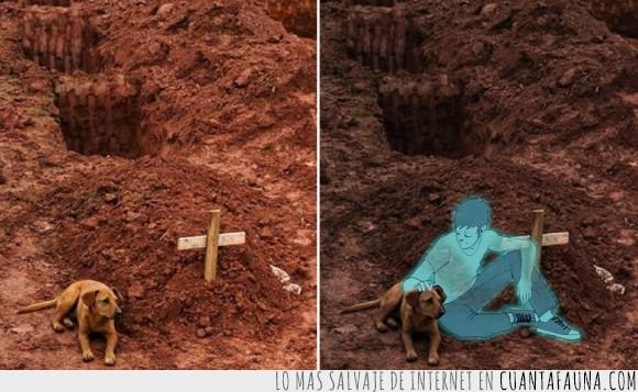 angel,dueño,extrañar,hachiko,mascota,menos,muerto,patas,Perro,tierra,tumba