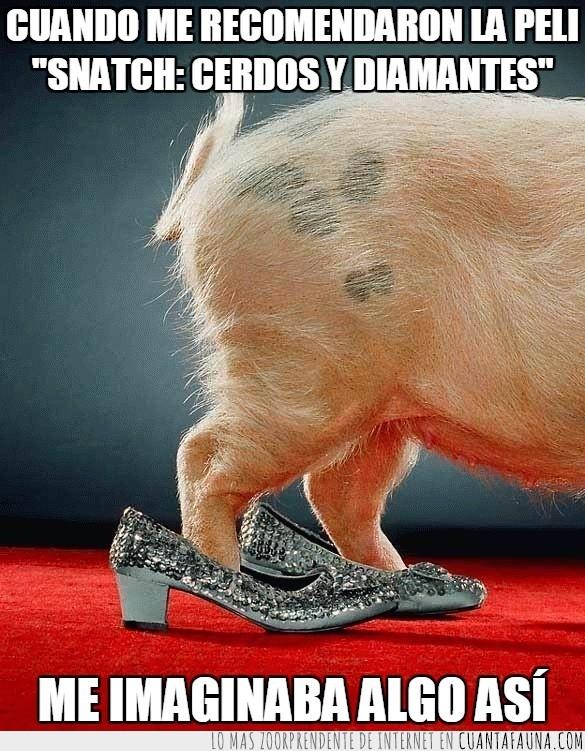 brillar,cerdo,cerdos y diamantes,pelicula,snatch,tacones