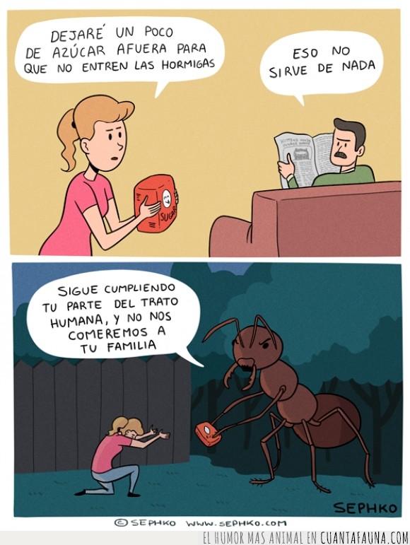 alejar,azucar,hormiga gigante,hormigas,sacrificio,Sephko