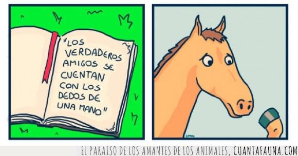 amigo,caballo,dedo,mano,verdadero