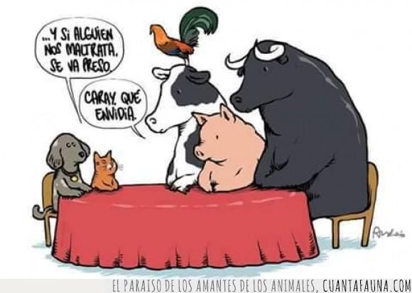 Animales,asesinato,cerdo,derechos,gato,justicia,maltrato,mascota,perro,toro,vaca