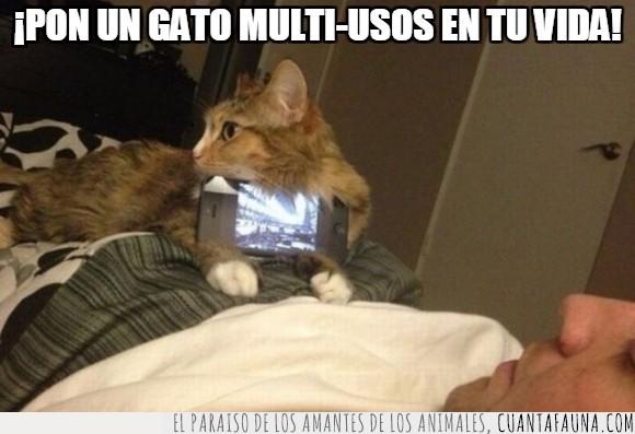 aguantar,gato,iPhone,mover,movil,multiusos,smartphone