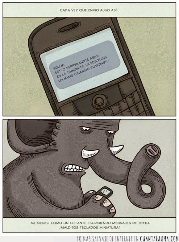 chat,confusión,correción,corregir,dedo,elefante,escribir,imposible,mal,mala ortografia,tecla,whatsapp