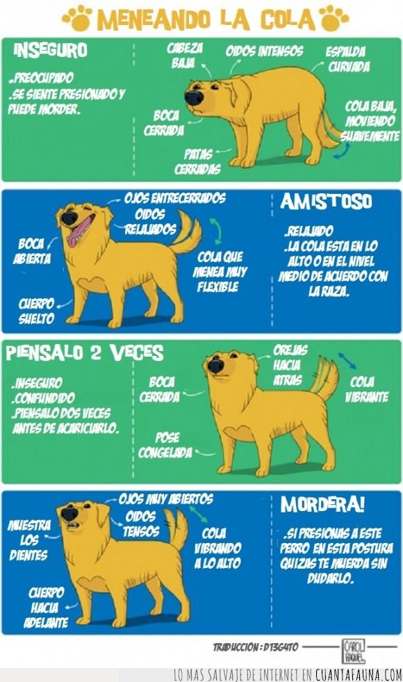 animales,cartel,cola,idioma,lenguaje,movimiento,perro,postura