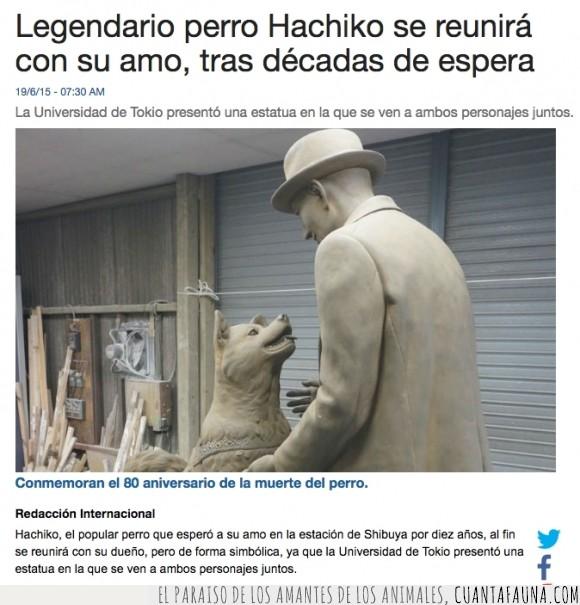 Animales,Conmemoración,Derechos,Estatua,Hachiko,Honor,Monumentos,Perros,Respeto,Tokyo,Universidad