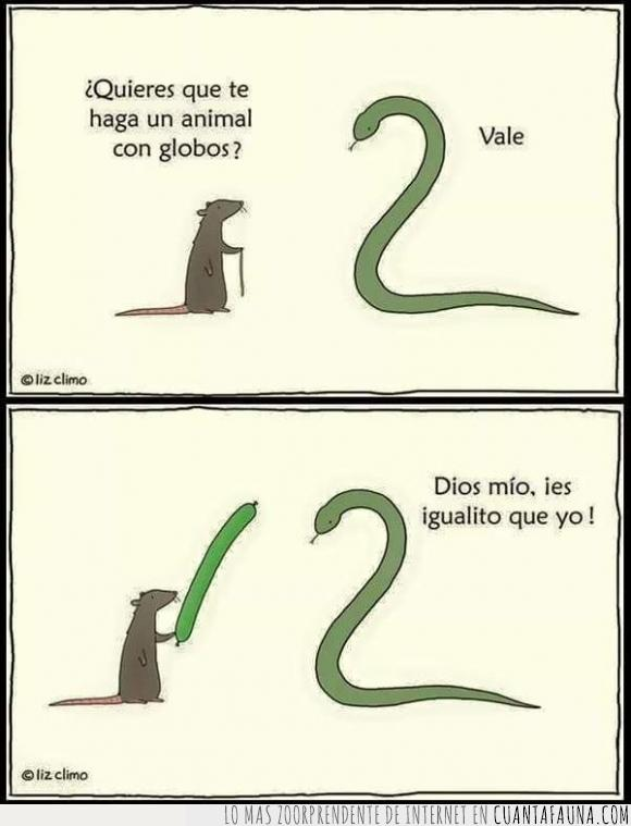 Animal,Feria,Forma,Globo,la rata sabe,Rata,Serpiente