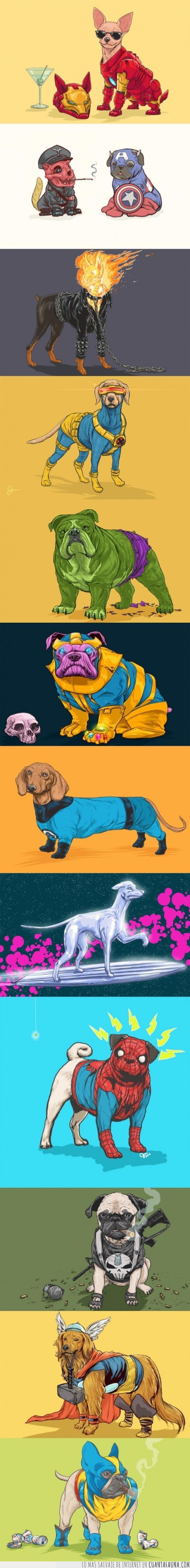 comic,Hulk,Iron Man,Marvel,perro,Silver surfer,Thor,Wolverine