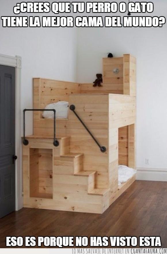 cama,caseta,dormir,escalera,gato,perro,regalo