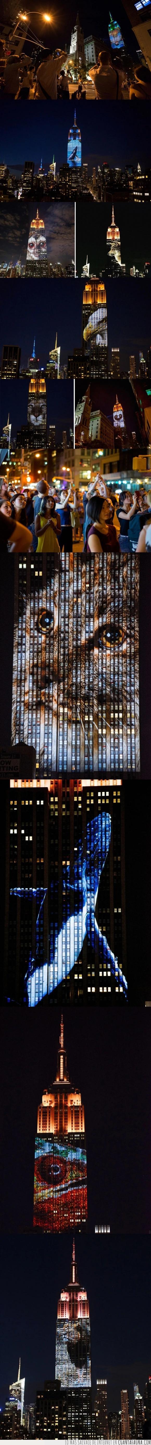 animales,Cecil,Empire State Building,especies,león,New York,Nueva York,NY,peligro extinción