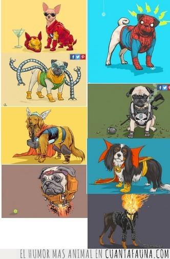 marvel,perros,superheroes