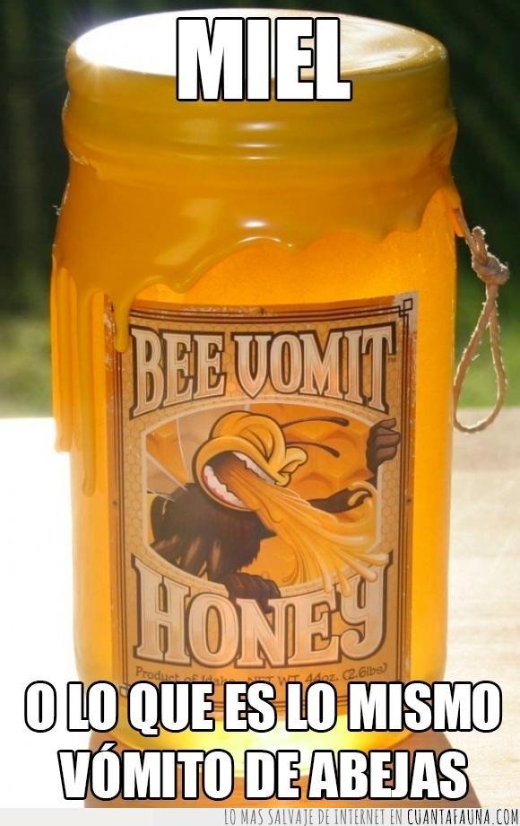 Abeja,bee vomit,botella,dulce,miel,regurgita 120 a 240 veces cada gota néctar después de su paso por su estómago,tarro,vómito