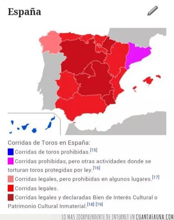 animales,Canarias,España,maltrato,prohibido,prohibir,Tauromaquia,toreros,toros