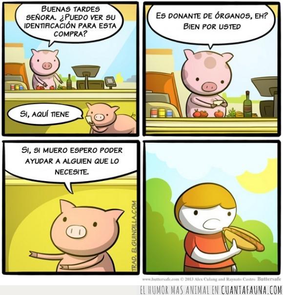 Cerdo,cómic,cuino,dibujos,historieta,humor,marrano,puerco