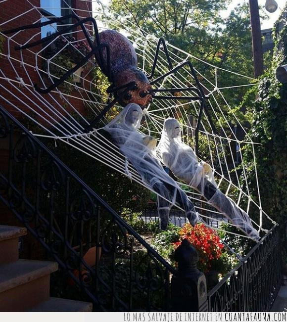 adorno,araña,escaleras,Halloween,miedo,muñeco,persona,telaraña