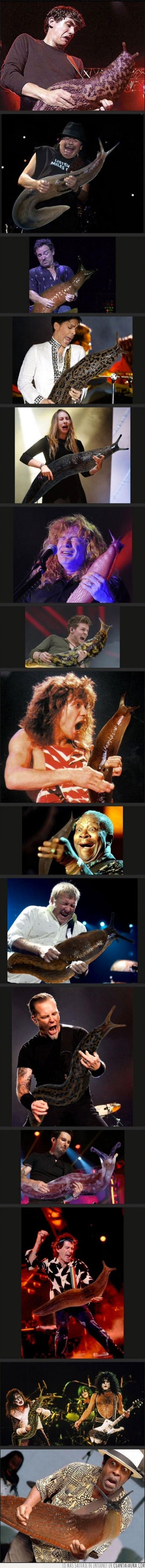 asco,Baba,babosa,cambiar,cara,caracoles,guitarra,rockstar